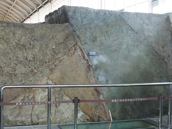 断層 野島断層保存館